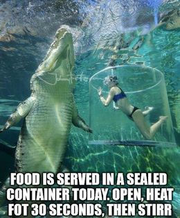 Sealed container memes