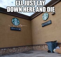 Just lay down here memes